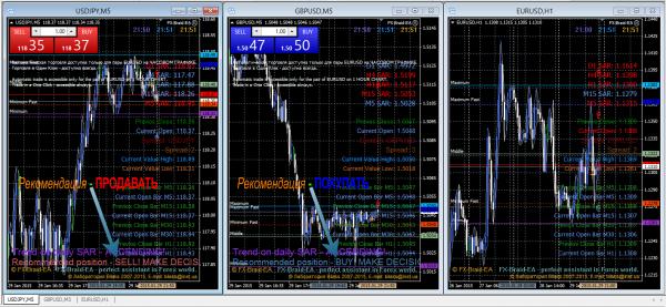 Forex FX-Braid-EA Trading Expert